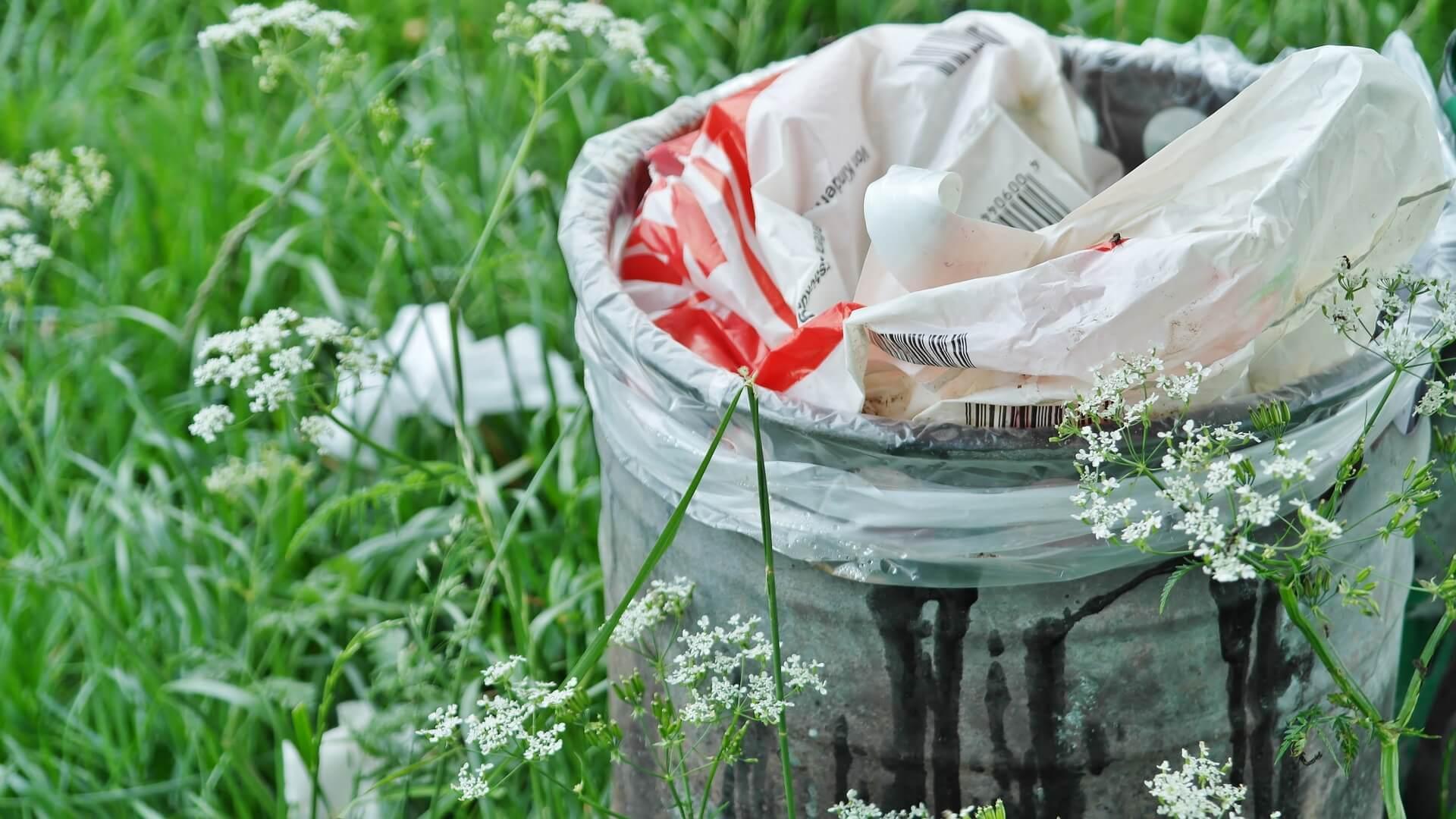 Buhr Gruppe Blog Plastikmüll vermeiden